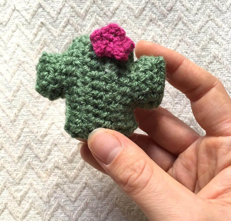 Moloney Makes Cacti Crochet Magnet