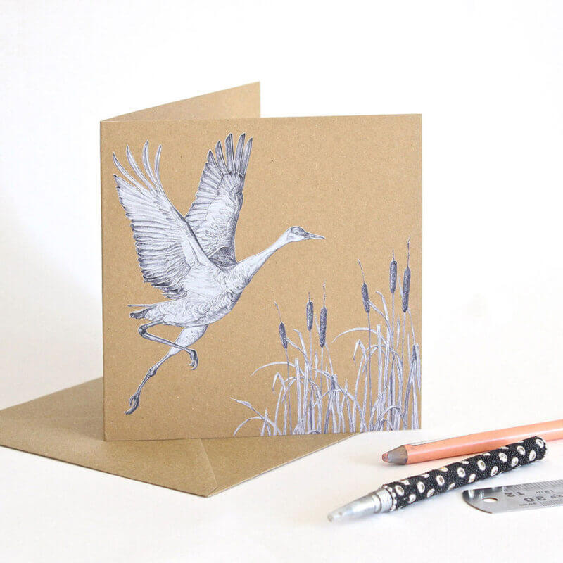 Sandhill-Crane-Greeting-Card-Sky-Siouki