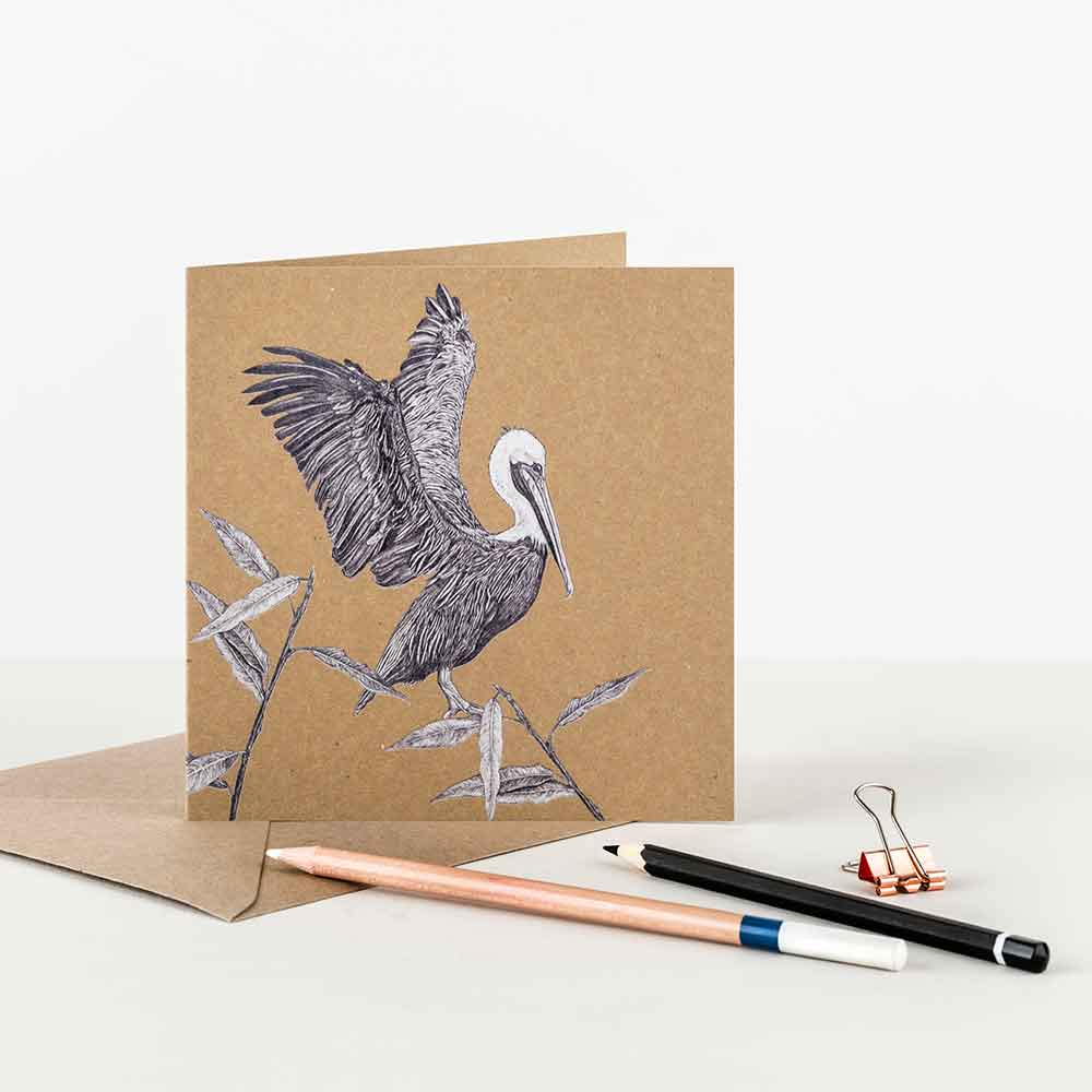 Brown-Pelican-Greeting-Card-Sky-Siouki