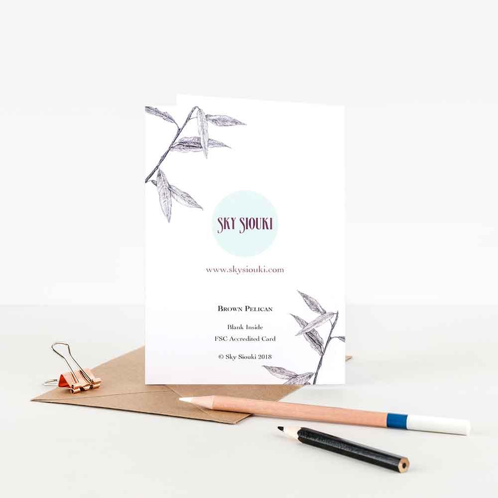 Brown-Pelican-Note-Card-Back-Sky-Siouki