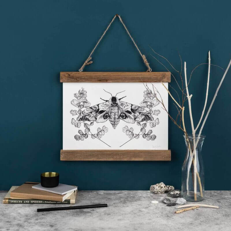 Sky-Siouki-Eyed-Hawk-Moth-Art-Print