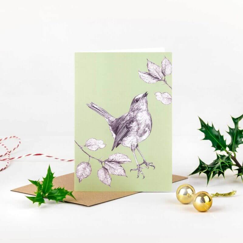 Sky-Siouki-Robin-Red-Breast-Card