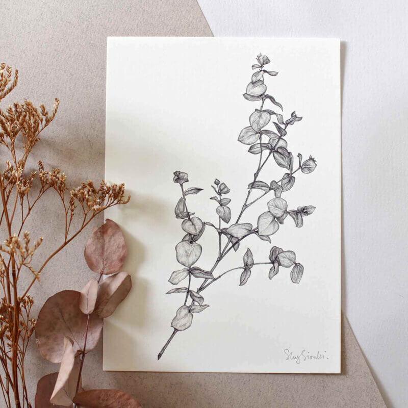 Eucalyptus-Art-Print-Sky-Siouki