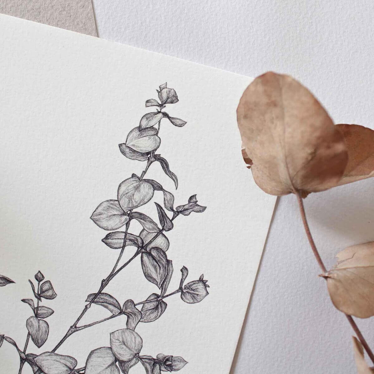 Eucalyptus Print Detail