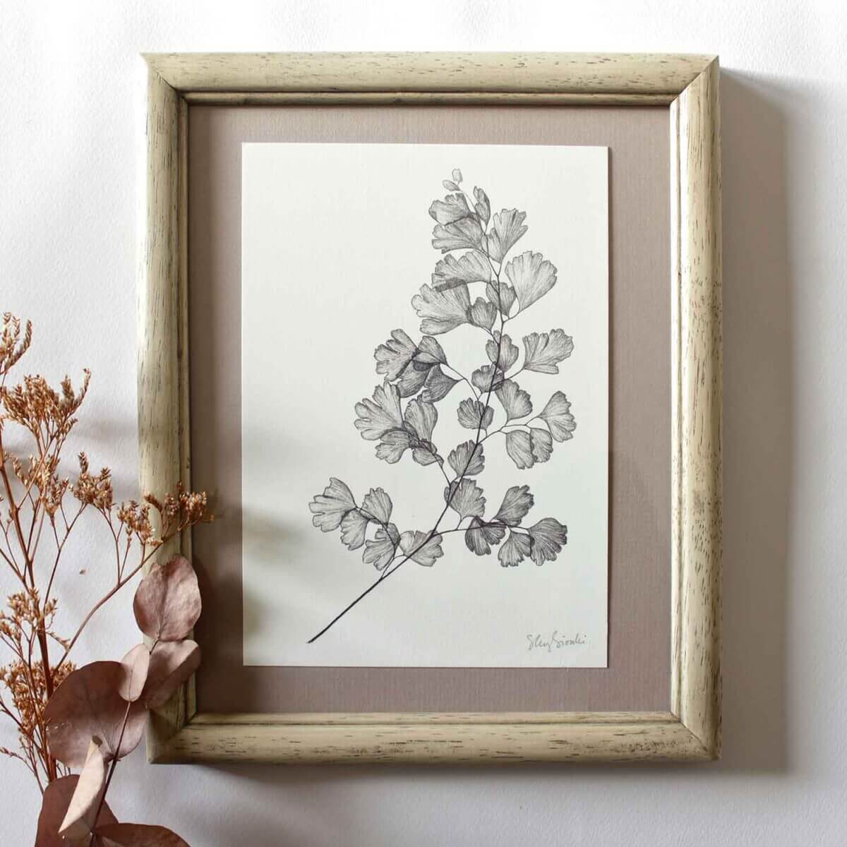 Maidenhair Fern Print Framed