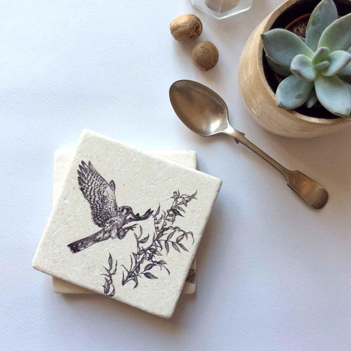 American-Kestrel-Natural-Coaster-Styled-Sky-Siouki