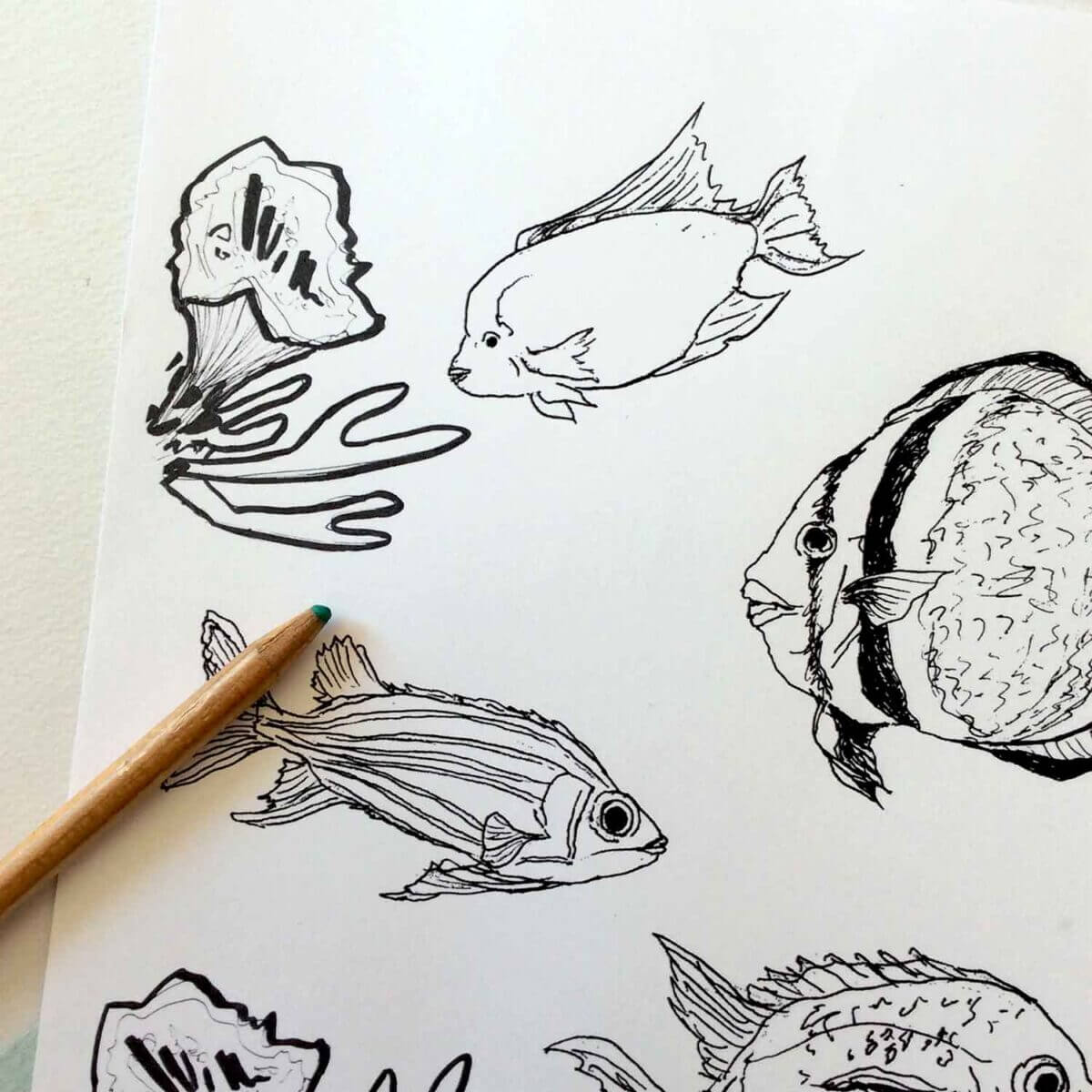Under-The-Sea-Colouring-Sheet-Fish-Detail-Sky-Siouki