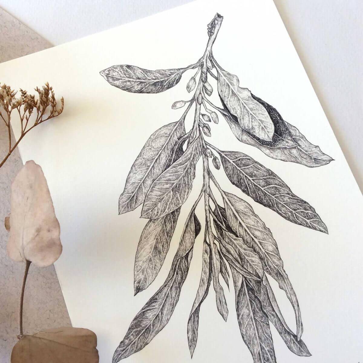 Wild-Olive-Art-Print-Detail-2-Sky-Siouki