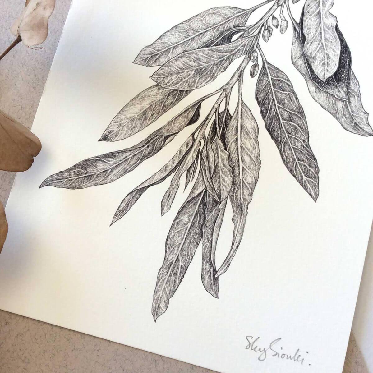 Wild-Olive-Art-Print-Detail-Sky-Siouki