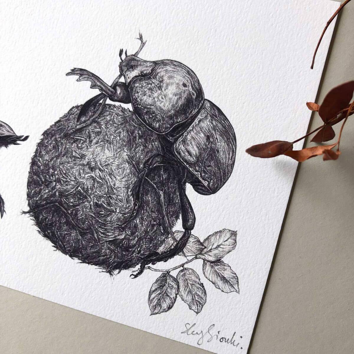 Dung-Beetles-Print-Corner-Sky-Siouki