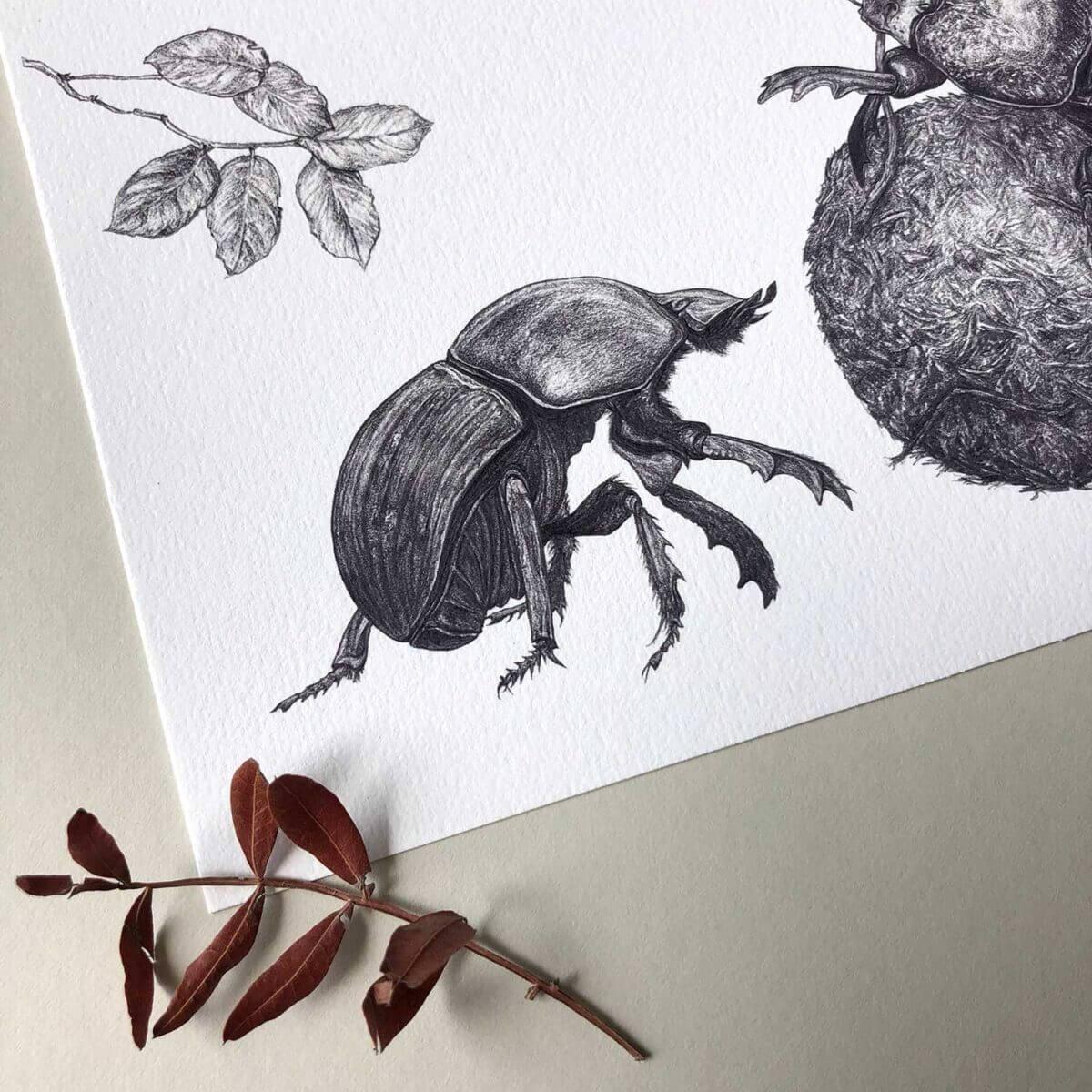 Dung-Beetles-Print-Detail-Sky-Siouki