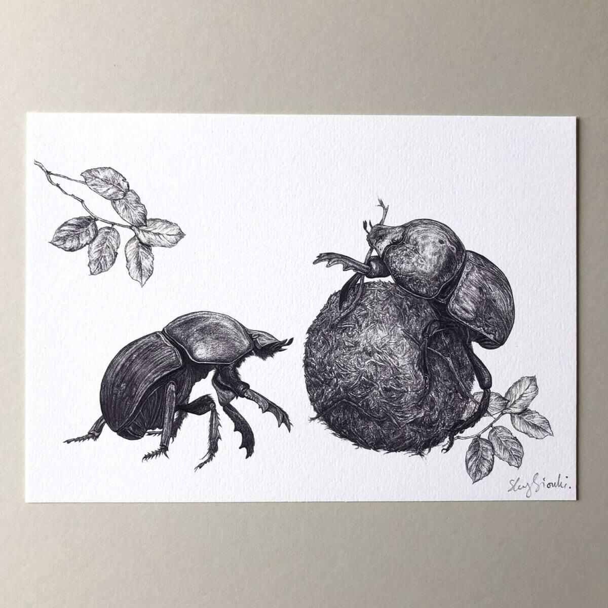 Dung-Beetles-Print-Flat-Sky-Siouki