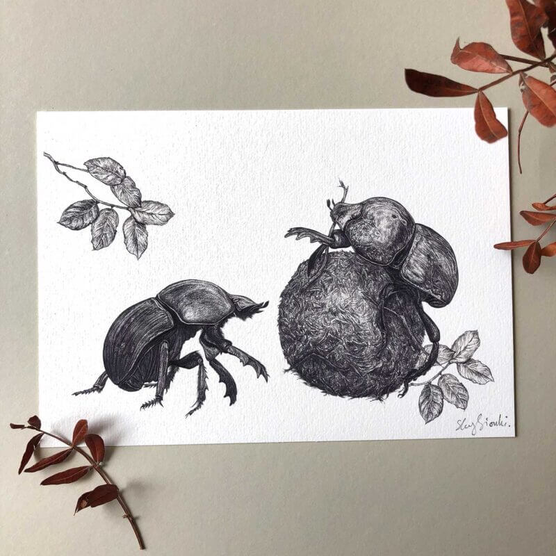 Dung-Beetles-Print-Sky-Siouki