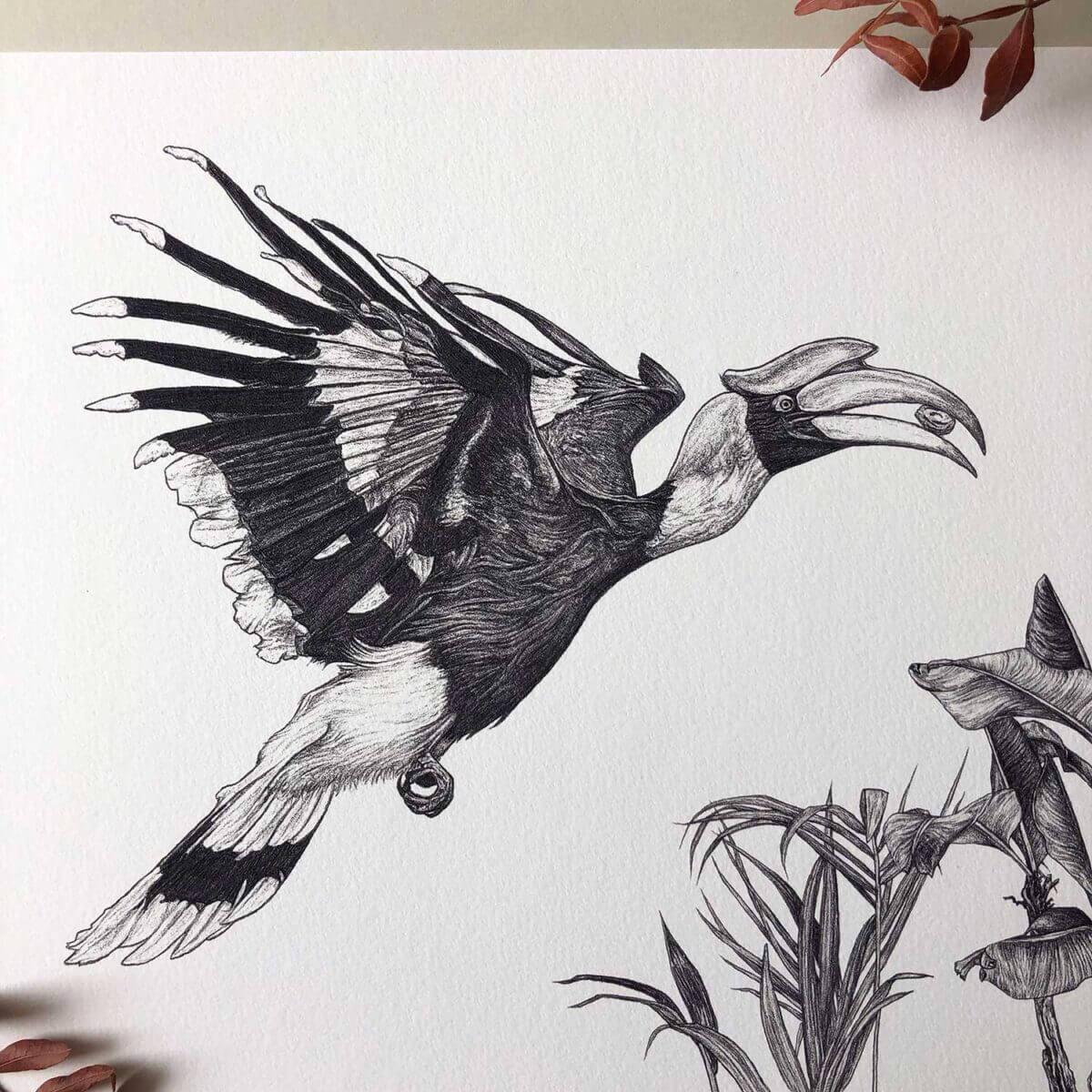 Great-Hornbill-Print-Bird-Sky-Siouki
