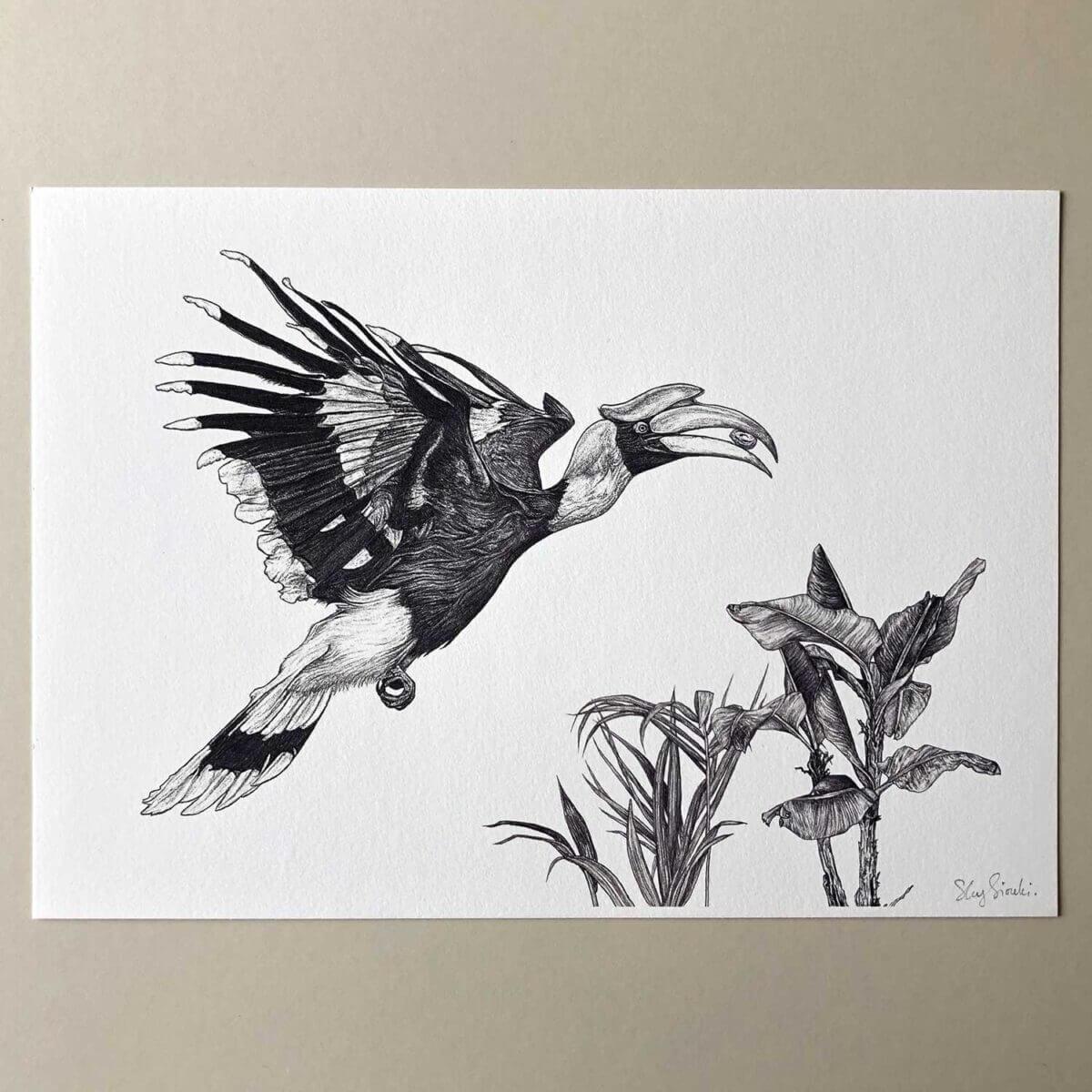 Great-Hornbill-Print-Flat-Sky-Siouki