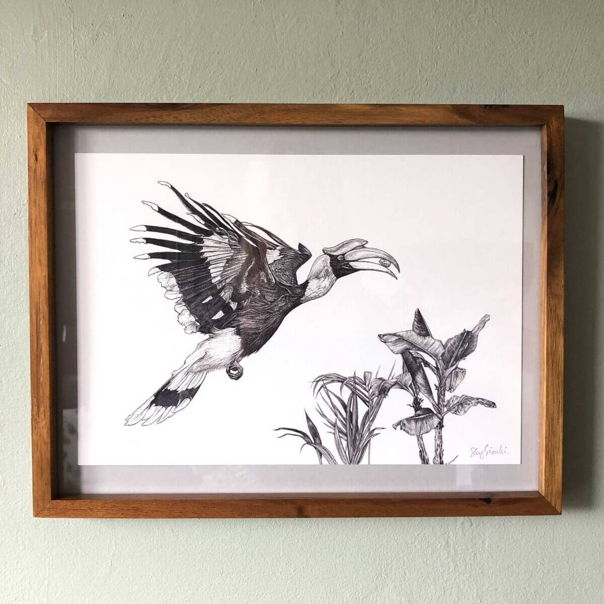 Great-Hornbill-Print-Frame-Sky-Siouki
