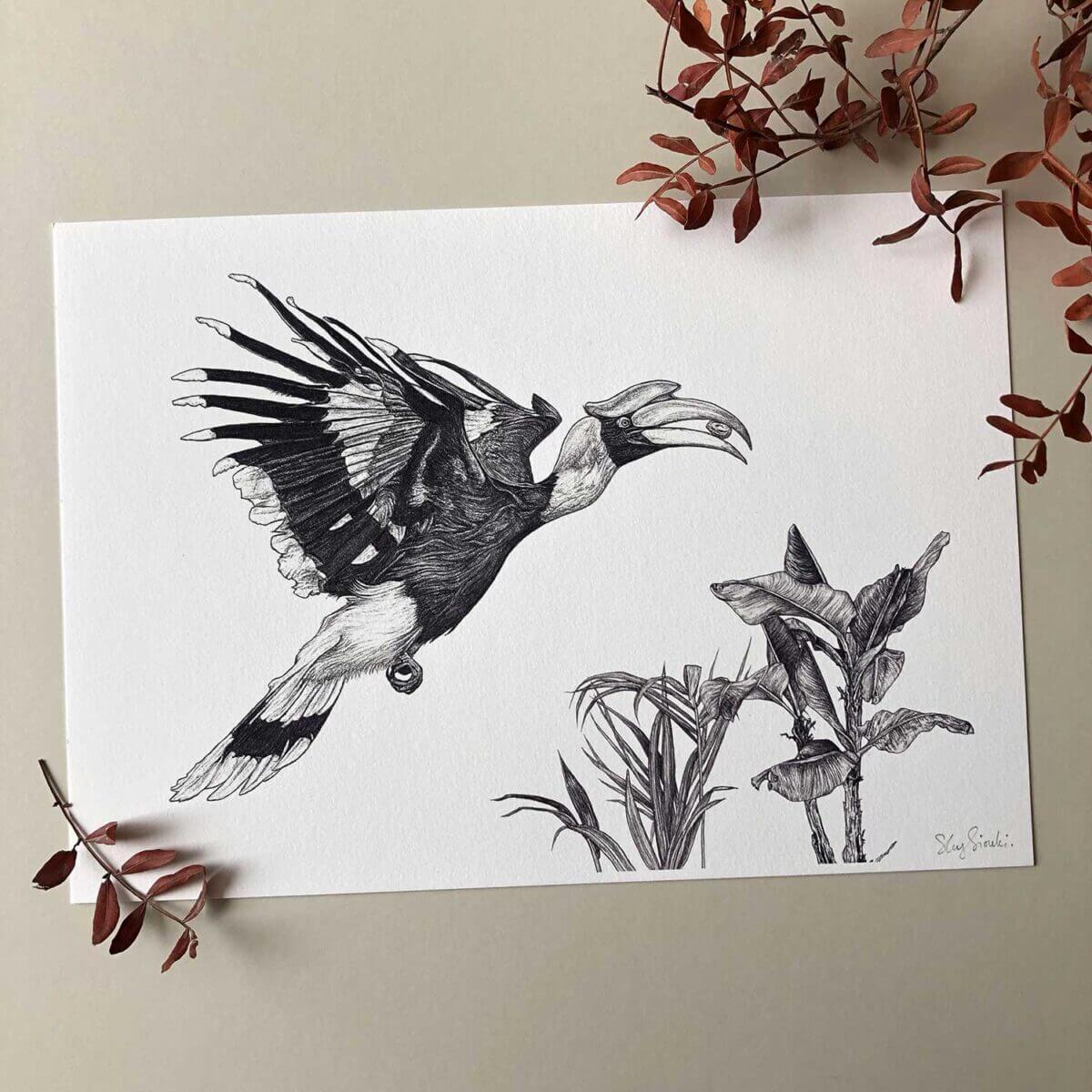 Great-Hornbill-Print-Sky-Siouki