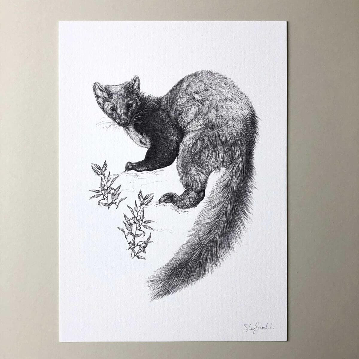 Pine-Marten-Print-Flat-Sky-Siouki