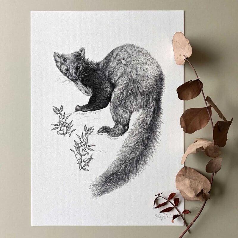 Pine-Marten-Print-Sky-Siouki