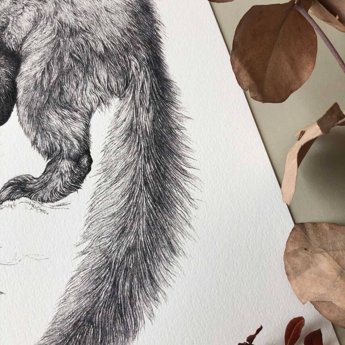 Pine-Marten-Print-Tail-Sky-Siouki
