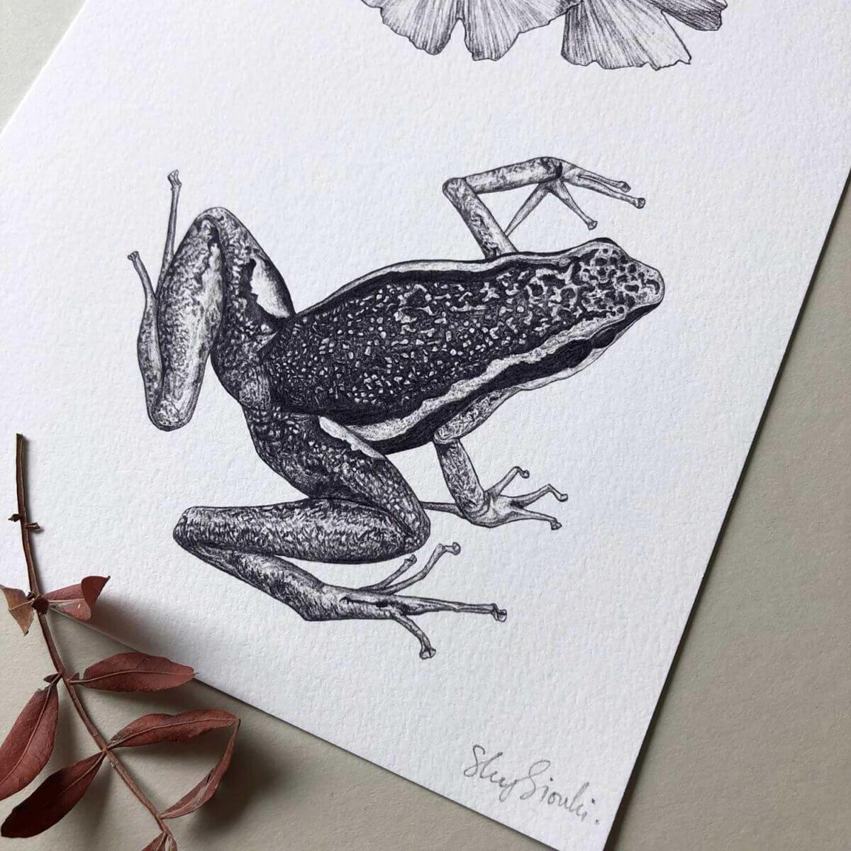 Poison-Dart-Frog-Print-Detail-Sky-Siouki